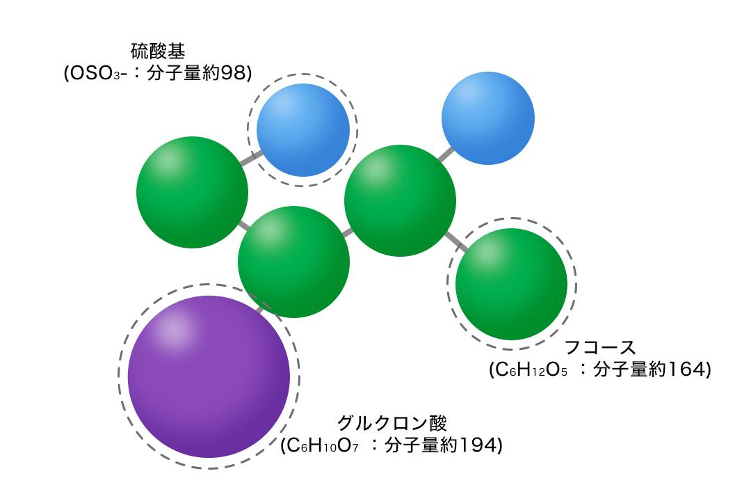 フコイダンの分子構造